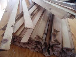 pine-wood-slivers